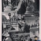 Сочи. Дендрарий, до 1957 года