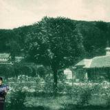 Сочи. Старая Мацеста. № 241. 1920-е годы