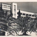 Сочи. Сторий им. Ворошилова, 1955 год