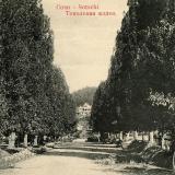 Сочи. Тополевая аллея, до 1917 года