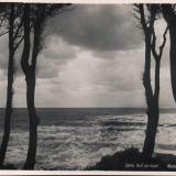Сочи. Вид на море, 1949 год