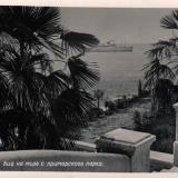 Сочи. Вид на море с приморского парка, 1955 год