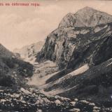 Сочи. Вид на снеговые горы, до 1917 года