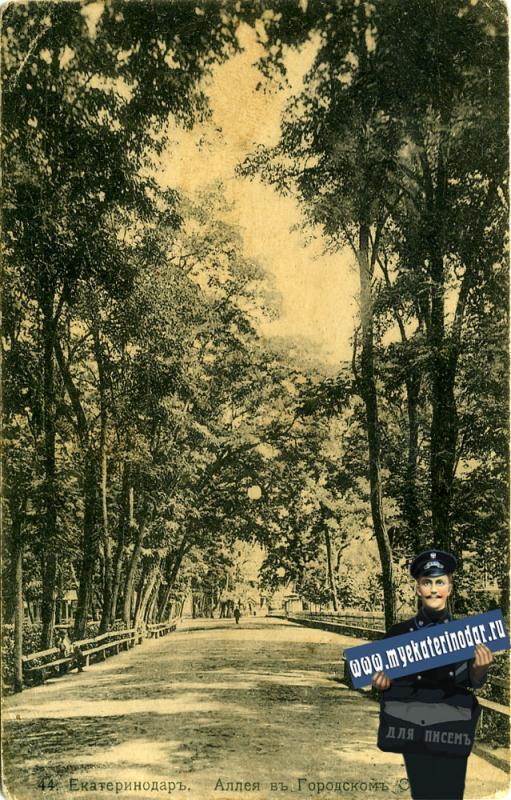 Екатеринодар. №44. Аллея в Городском саду, около 1913 года