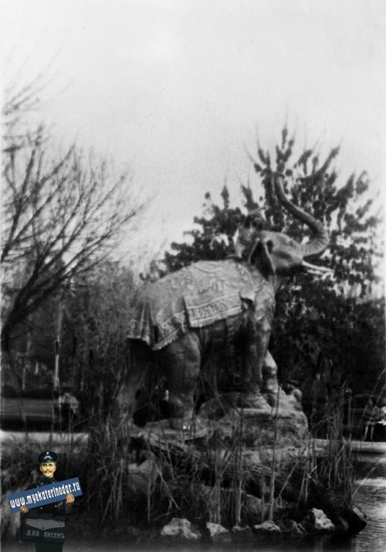 Краснодар. Детский сквер. Камыш в фонтане. 7 ноября 1965 года.