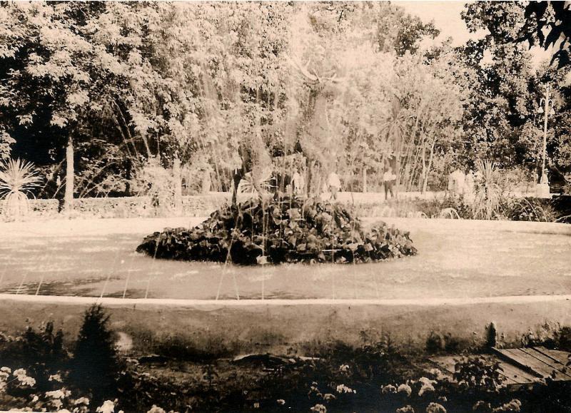 Краснодар. Парк им. М. Горькго, фонтан с цветочным оленем, 1962 - 1963 гг.