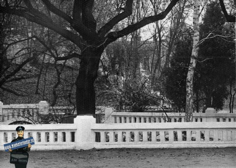 Краснодар. В парке Горького у малого пруда, 1961 год