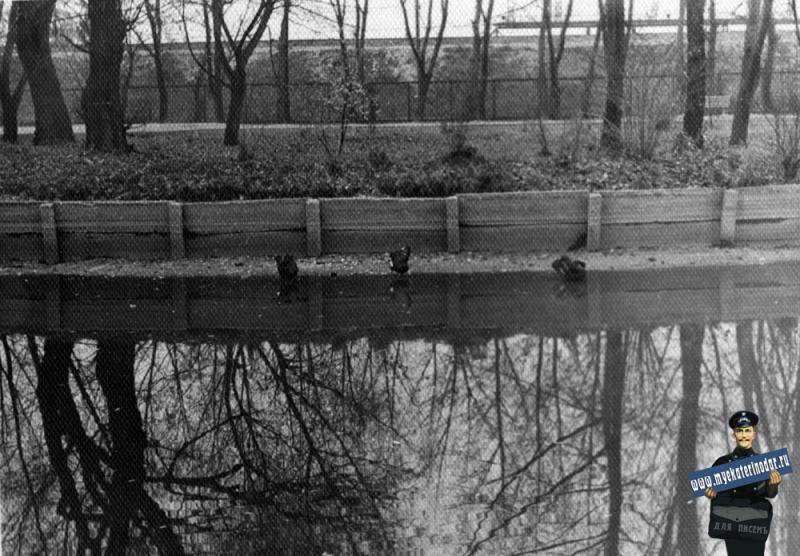 Краснодар. В парке Горького у обмелевшего пруда, около 1961 года