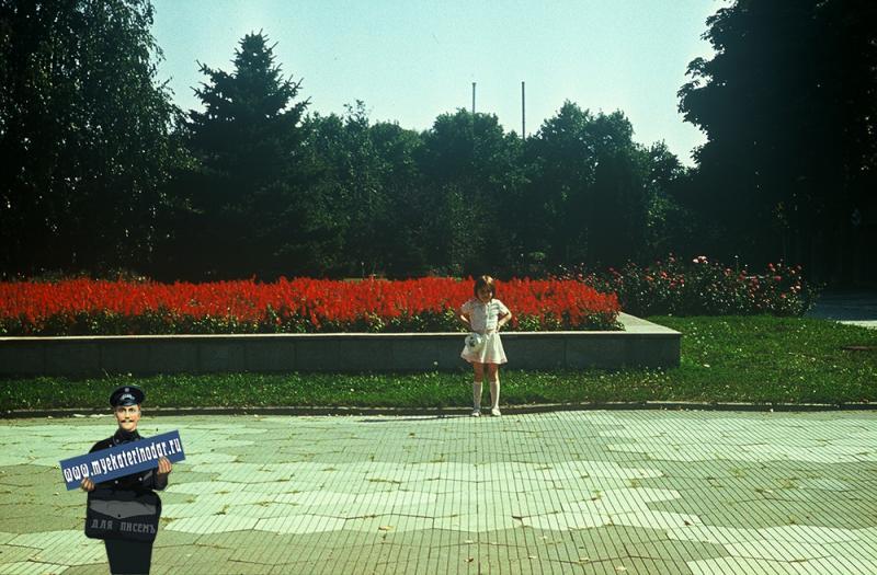 Краснодар. Цветник на ул. Советской, 1987 год