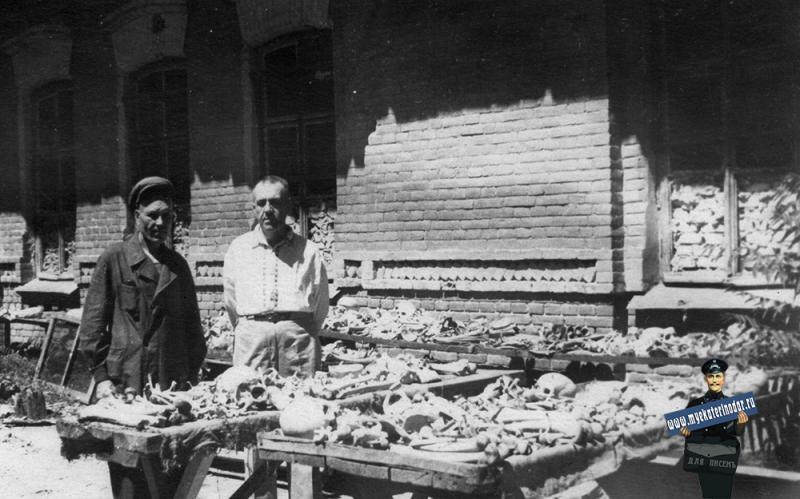 Краснодар. Костный двор Мединститута, начало 1950-х