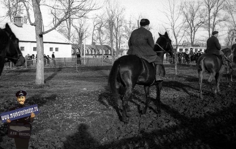 Краснодар. КСХПВ. Площадка для выгула лошадей, 1956 год