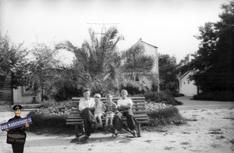 """Краснодар. Летний кинотеатр """"Салют"""" в Горпарке и парашютная вышка, 1959 год"""