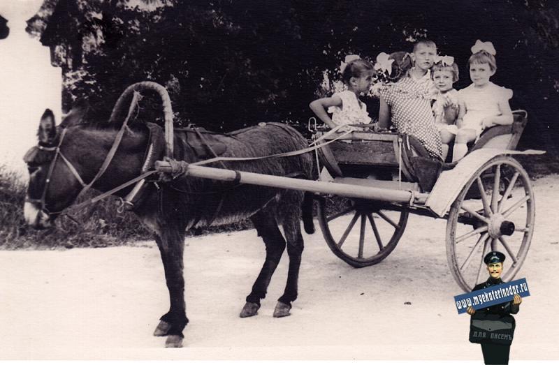 Краснодар. Парк им. М. Горького, начало 1960-х