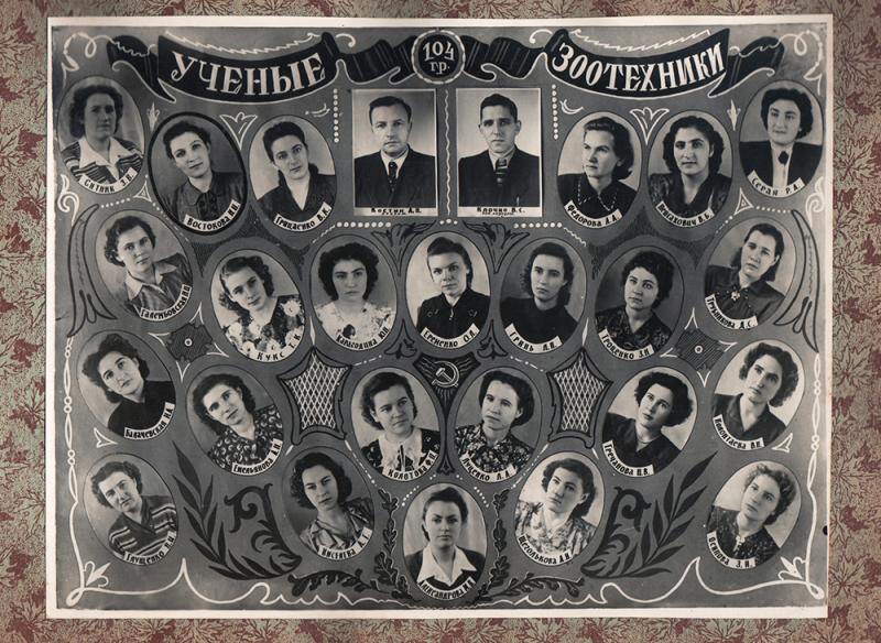 Краснодар. Первый выпуск ученых-зоотехников КСХИ. 1950-1955 годы