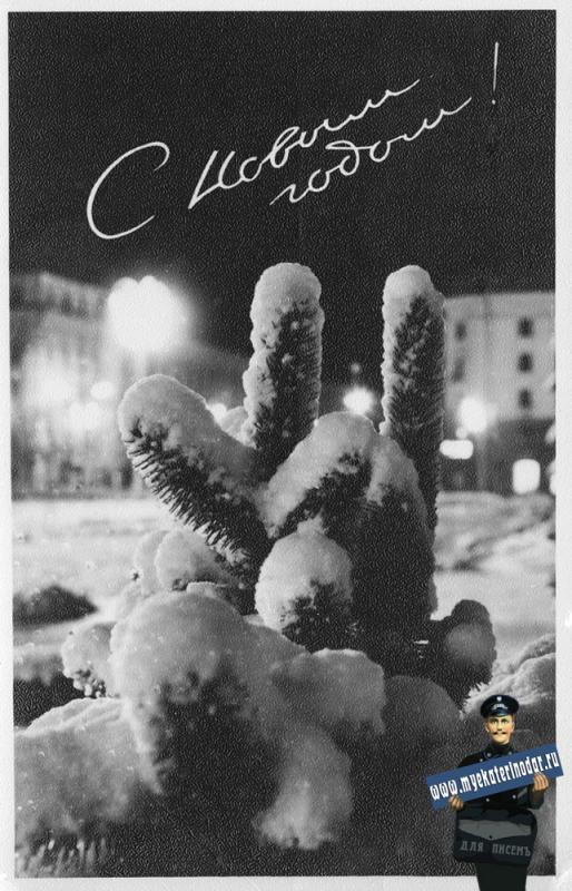 Краснодар. С Новым годом!