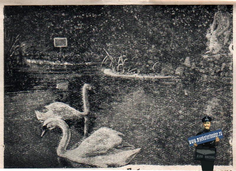 Краснодар. В парке им. М. Горького, 1940 год