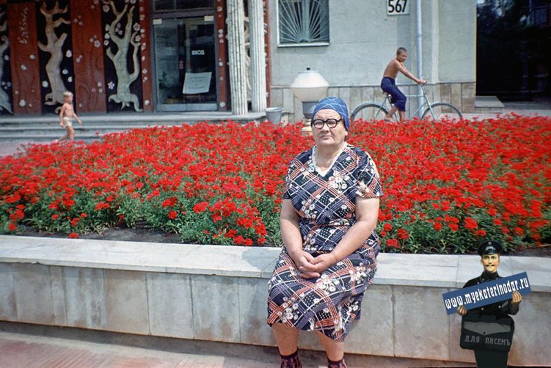 Краснодар. Улица Красных партизан 567, 1980 год