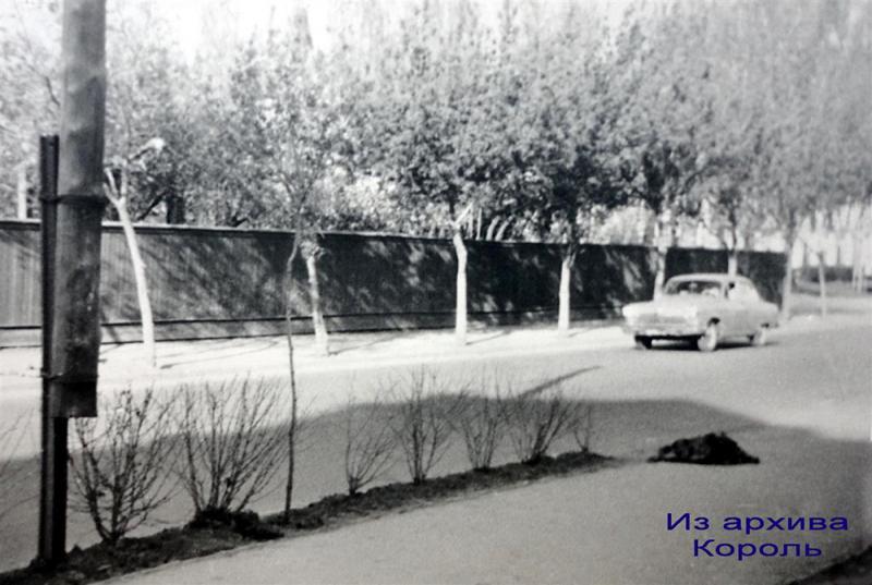 Краснодар. Улица Ленина
