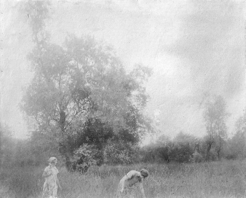 Закубанский лес,  май 1926