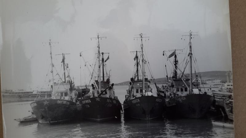 Рыболовные суда у центрального причала Геленджика
