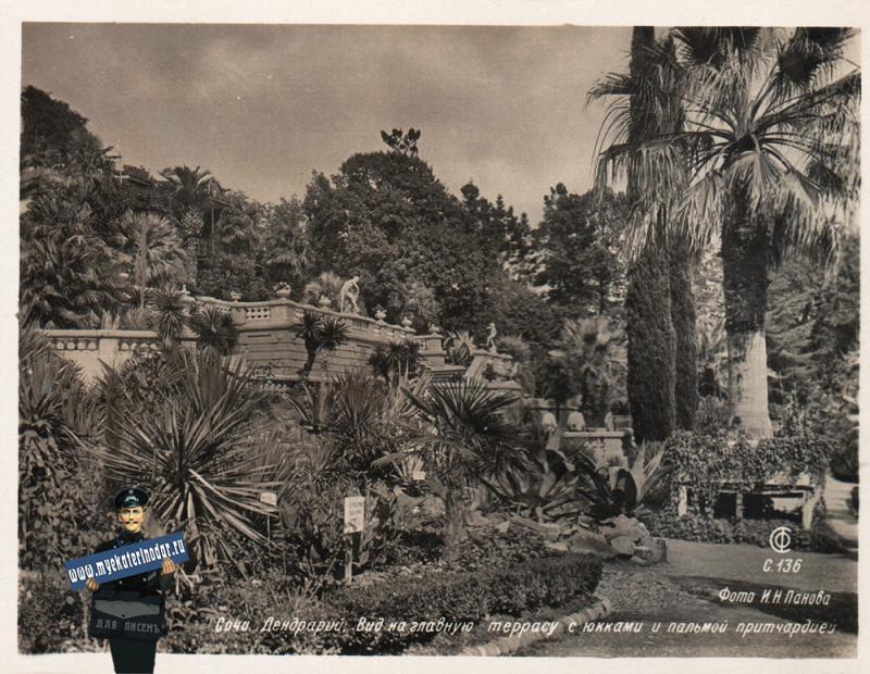 Сочи. Дендрарий. Вид на главную террасу, 1940 год