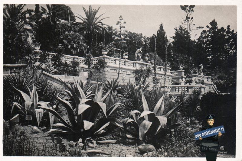 Сочи. Дендрарий. Вид на терассу. 1935 год
