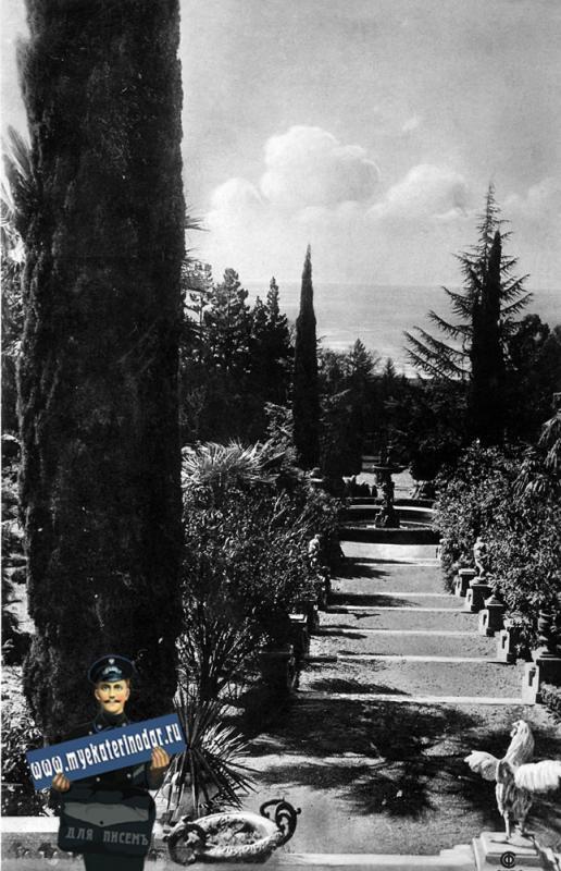 СОЧИ. Дендрарий (б. Худяковский парк) Вид с верхней терассы.