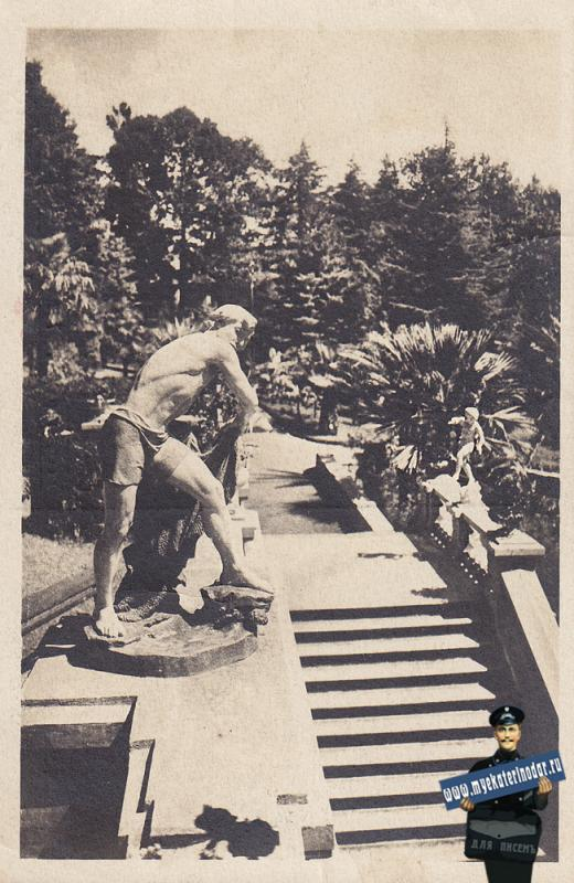 Сочи. Дендрарий, 1950-Е