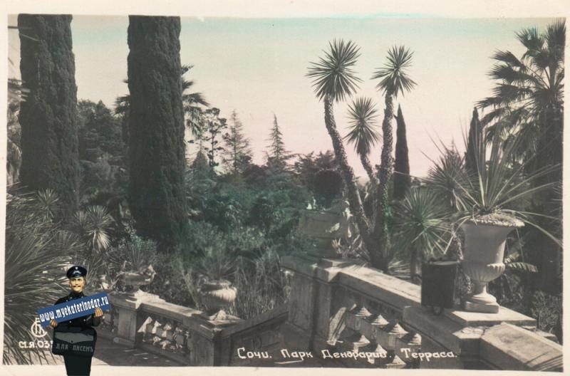 Сочи. Парк Дендрарий. Терраса. 1947 год